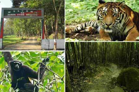 Dampa Tiger Reserve