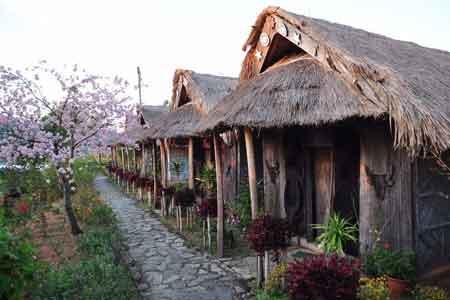 Tuophema Village